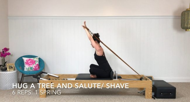 Hug A Tree and Salute/Shave graphic