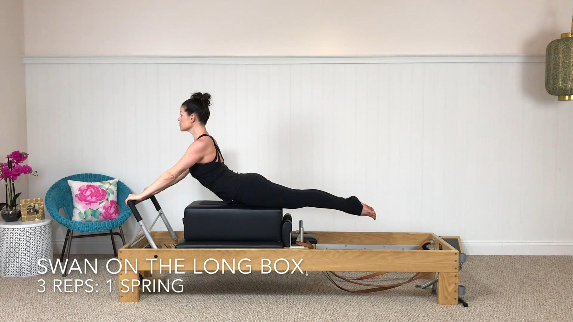 Swan on the Long Box